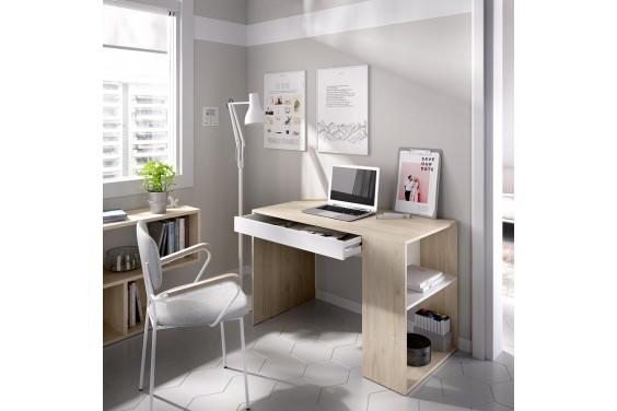 Mesa Escritorio DINA con Cajón y Estante lateral